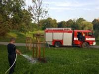 Se zaléváním stromů nám pomáhají hasiči