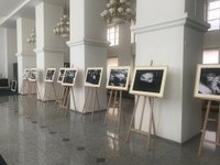 Zveme vás na výstavu v rámci projektu OKO v Ostravě